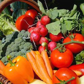 Какие овощи выгоднее сейчас выращивать